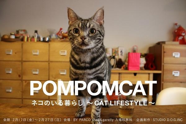 0120_pomcat2_r1