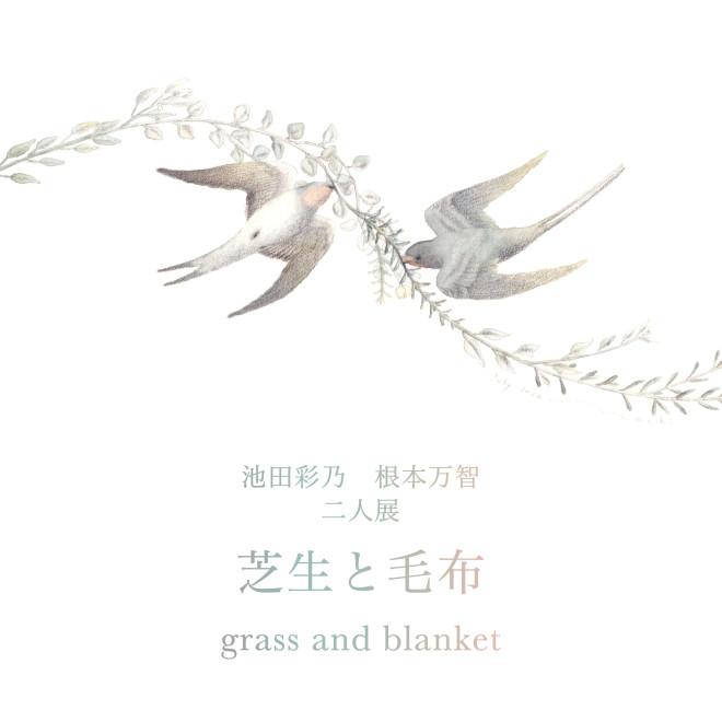 banner_shikaku